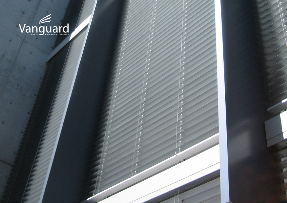 vanguard-blinds-branding-17.jpg